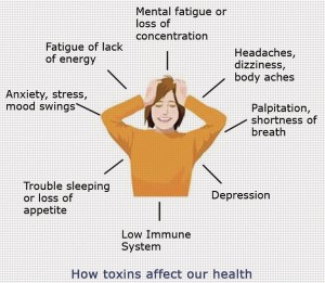 The stress and our health