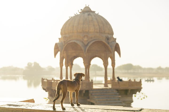 7 Tips for People Travelling to India